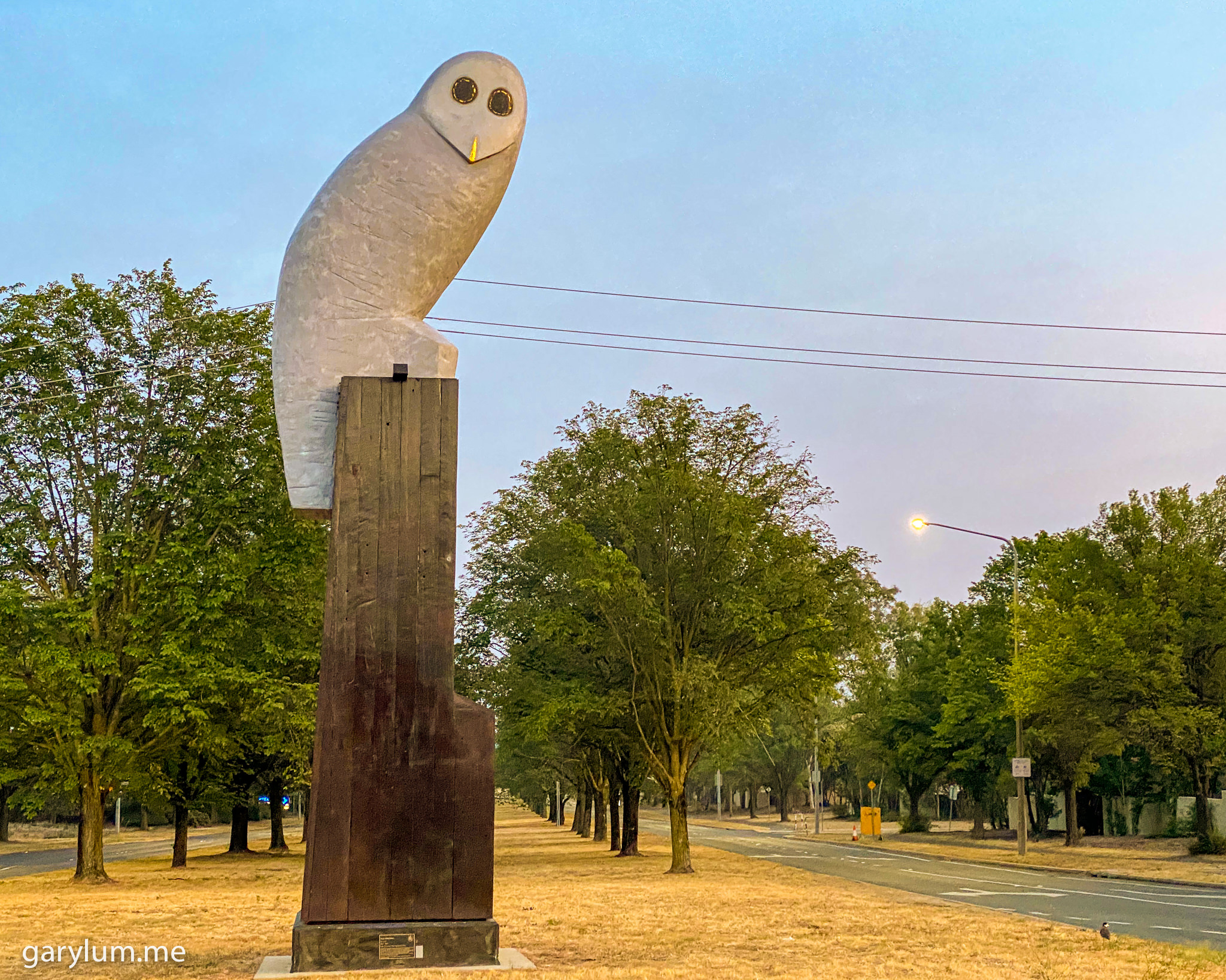 Photograph of The Owl Statue on Saturday morning. Gary Lum.