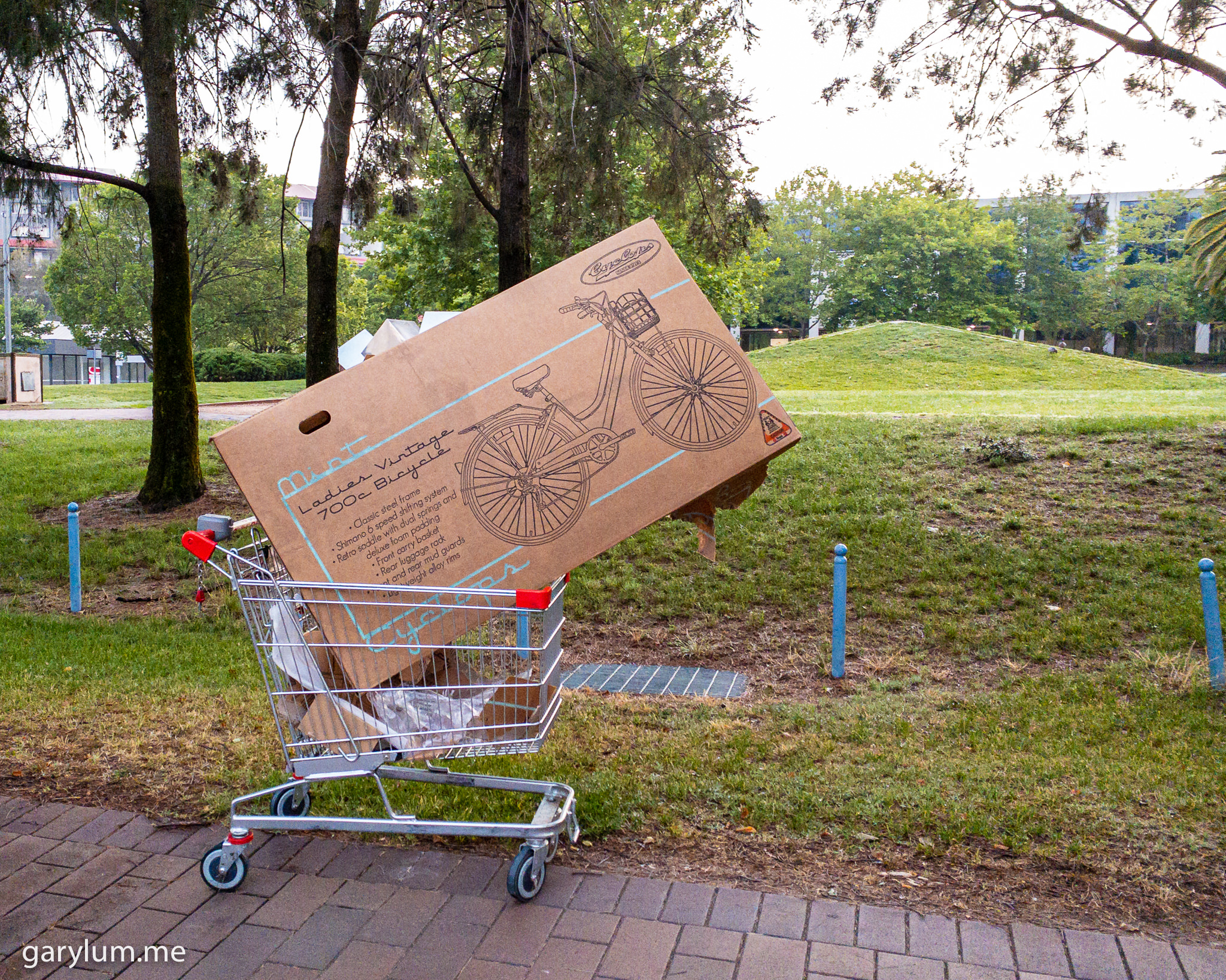 Photograph of Shopping trolley with an empty bicycle box at Margaret Timpson Park, Belconnen. Gary Lum.