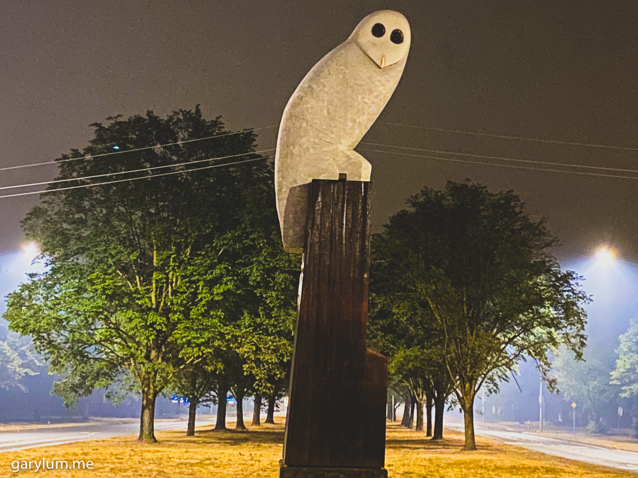 PHotograph of The Owl Statue on an hazy Saturday morning in smoke inundated Canberra. Gary Lum.