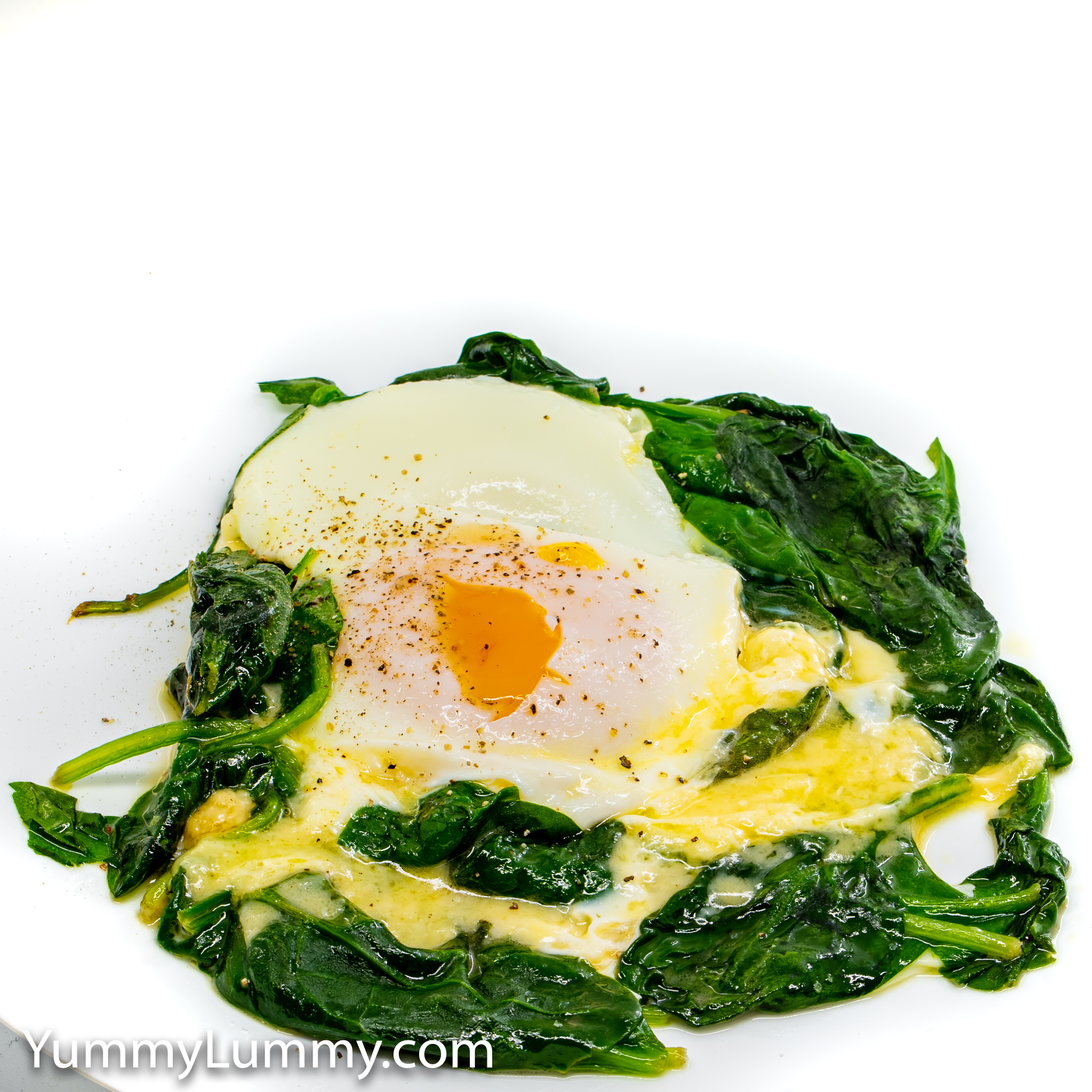 Photograph of Steamed egg, melted cheese, and wilted spinach. Gary Lum.